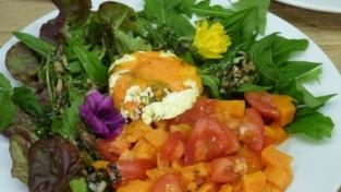 Herbstlicher Wildkräuter-Salat...