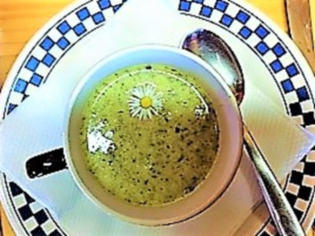 Feine Neun-Kräuter-Suppe